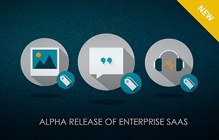 DefinedCrowd Announces Alpha Release of Enterprise Software-as-a-Service